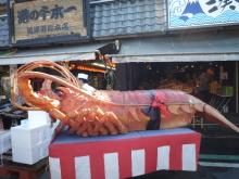 うおっち&ももの海水魚日記-エビ2