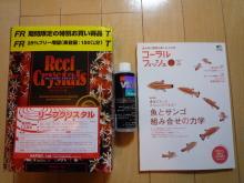 うおっち&ももの海水魚日記-買い物