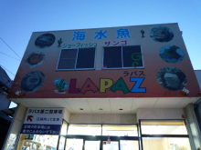 うおっち&ももの海水魚日記-LAPAZ1