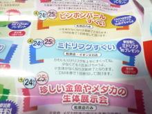 うおっち&ももの海水魚日記-広告1