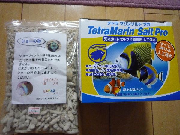 うおっち&ももの海水魚日記-買い物1