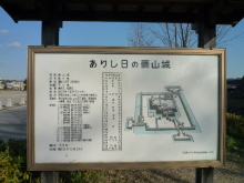 うおっち&ももの海水魚日記-篠山1