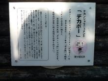 うおっち&ももの海水魚日記-篠山3