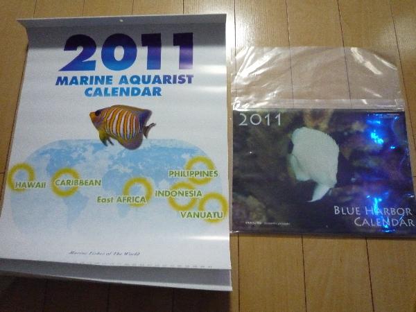うおっち&ももの海水魚日記-カレンダー