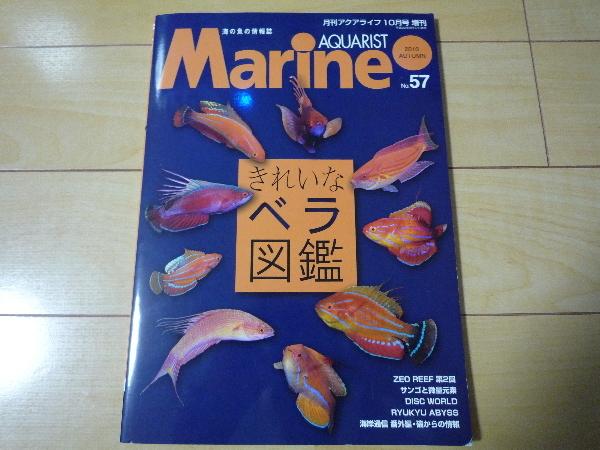 うおっち&ももの海水魚日記-MA-1