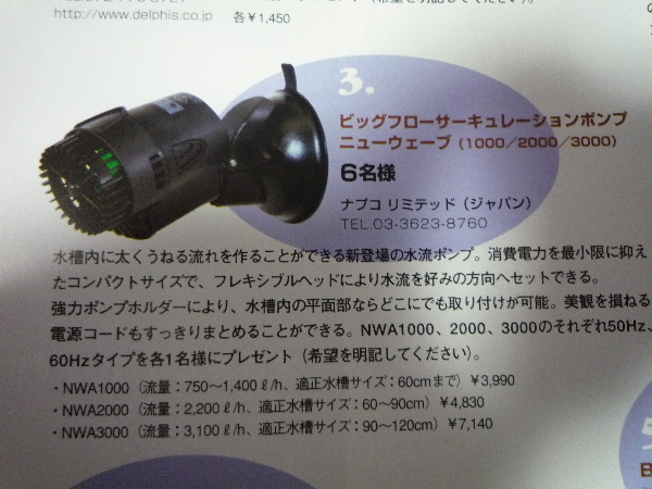うおっち&ももの海水魚日記-MA-3
