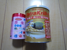 うおっち&ももの海水魚日記-PSO-2