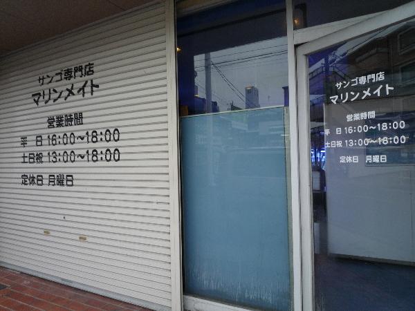 うおっち&ももの海水魚日記-MM