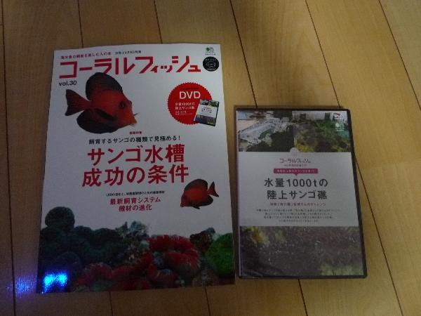 うおっち&ももの海水魚日記-CF