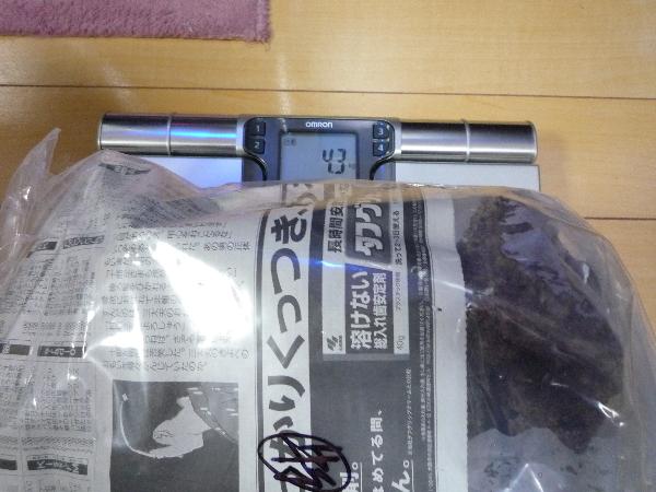 うおっち&ももの海水魚日記-LB2