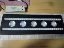 うおっち&ももの海水魚日記-LED-3
