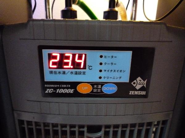 うおっち&ももの海水魚日記-ZC1000E
