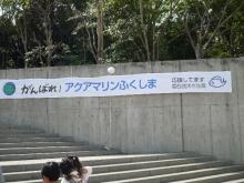 うおっち&ももの海水魚日記-葛西1