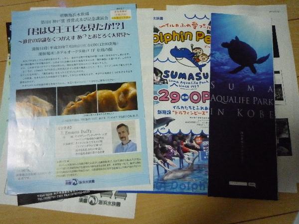うおっち&ももの海水魚日記-神戸賞9