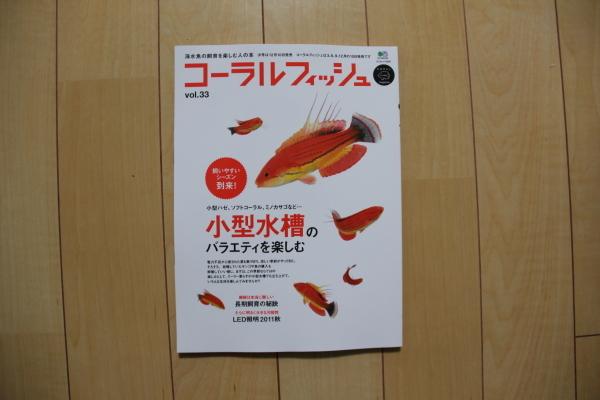 うおっち&ももの海水魚日記-L-17