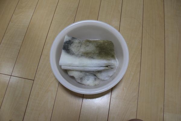 うおっち&ももの海水魚日記-ban-5
