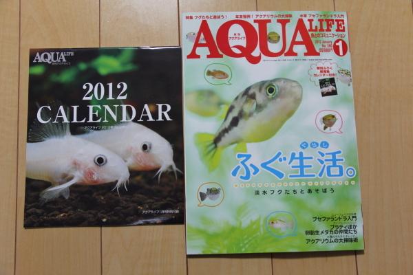 うおっち&ももの海水魚日記-AT-1