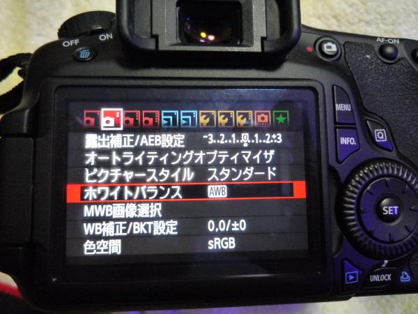 うおっち&ももの海水魚日記-カメラ1