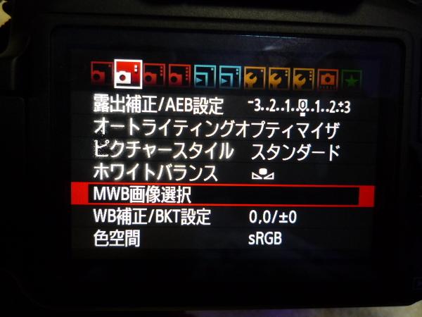 うおっち&ももの海水魚日記-カメラ2