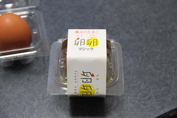 うおっち&ももの海水魚日記-プリン1