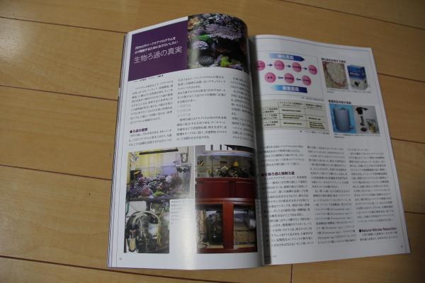 うおっち&ももの海水魚日記-本2