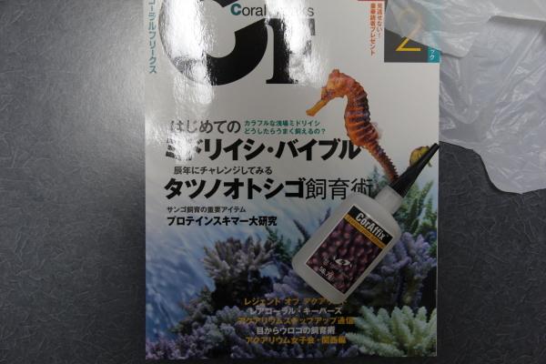うおっち&ももの海水魚日記-BH