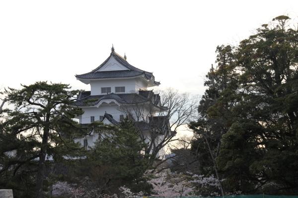 うおっち&ももの海水魚日記-iga1