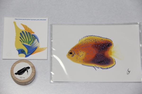 うおっち&ももの海水魚日記-お土産