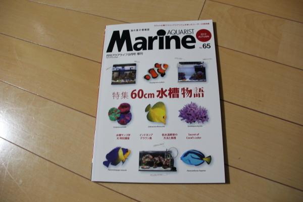 うおっち&ももの海水魚日記-BH1