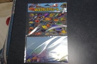 うおっち&ももの海水魚日記-4