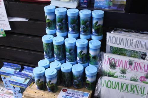 SUIKEI FOOD 東海 岐阜 熱帯魚 水草 観葉植物販売 Grow aquarium