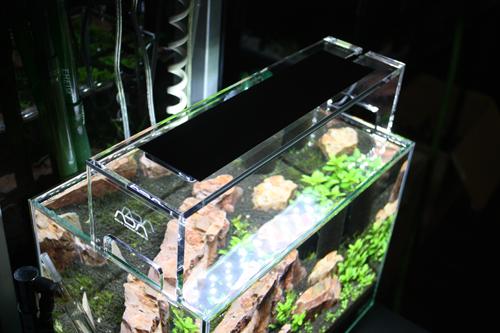 ADA 新型LED照明 アクアスカイ 東海 岐阜 熱帯魚 水草 観葉植物販売 Grow aquarium