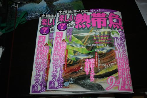 楽しい熱帯魚7月号 東海 岐阜 熱帯魚 水草 観葉植物販売 Grow aquarium