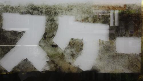 プロレイザースゲー! 東海 岐阜 熱帯魚 水草 観葉植物販売 Grow aquarium
