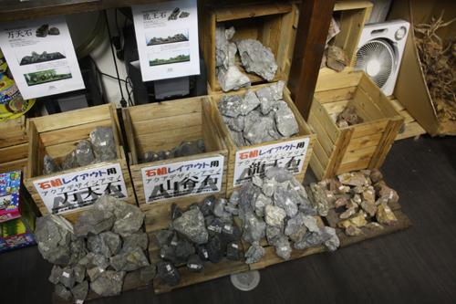 龍王石入荷 東海 岐阜 熱帯魚 水草 観葉植物販売 Grow aquarium