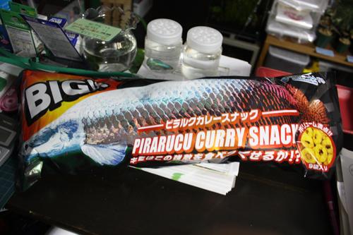 いつもありがとうございます。東海 岐阜 熱帯魚 水草 観葉植物販売 Grow aquarium