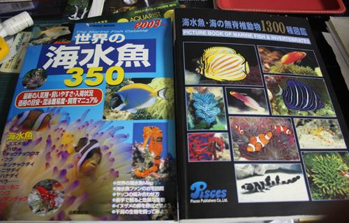 海水魚・海の無脊椎動物1300種図鑑 東海 岐阜 熱帯魚 水草 観葉植物販売 Grow aquarium