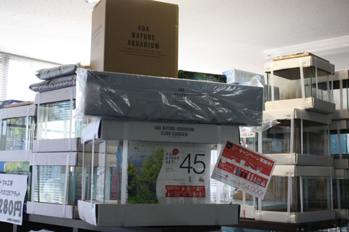 45cmスタートセット在庫 東海 岐阜 熱帯魚 水草 観葉植物販売 Grow aquarium