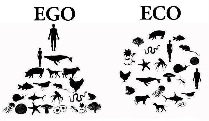 ego-eco.jpg