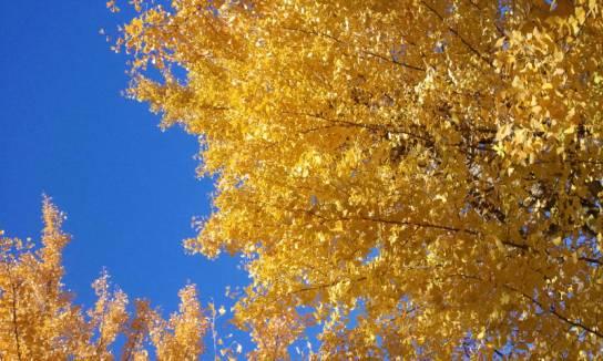 C360_2012-11-25-10-37-26.jpg