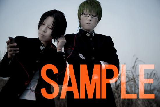 sample_6056070.jpg