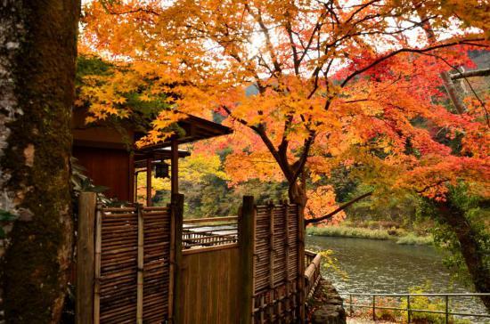 021_convert_20121120114943.jpg