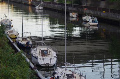 浜田川のヨット2