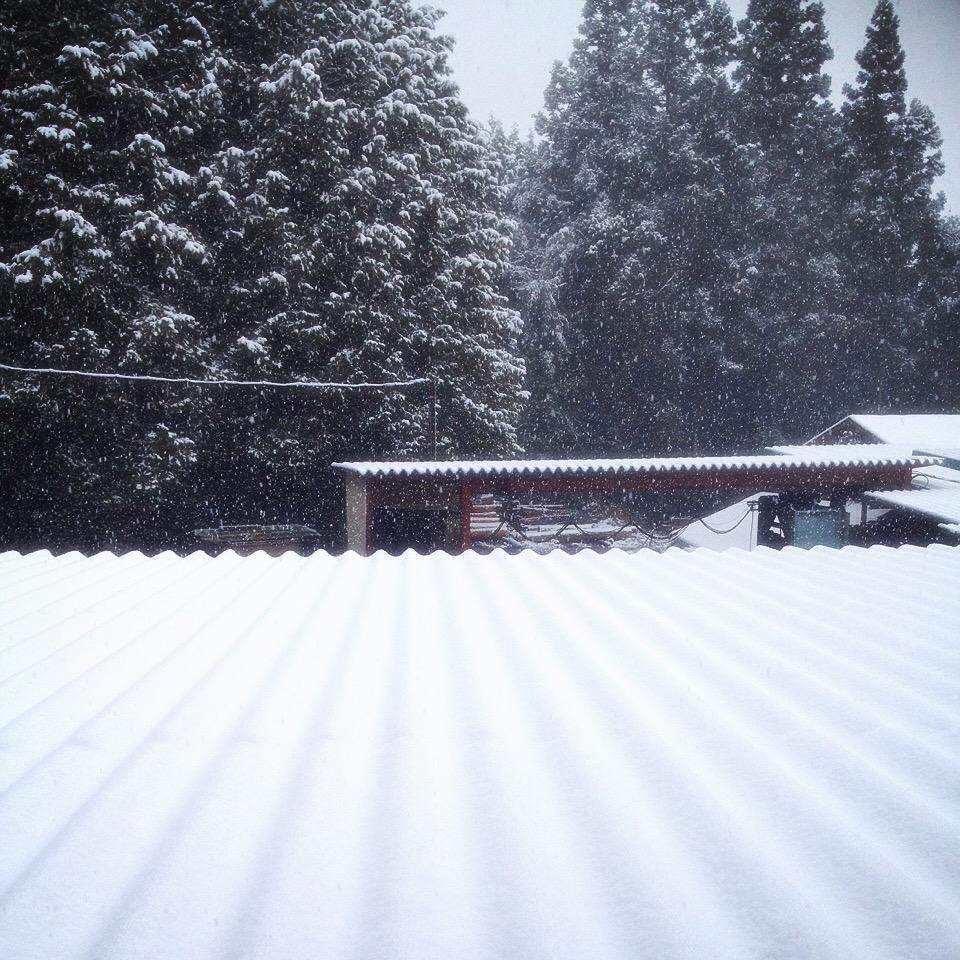 製材所 初雪