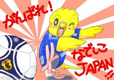 サッカーがんばれ!