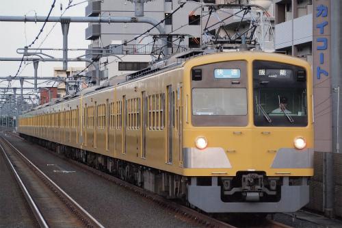 P7020094-.jpg