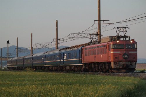 P8207148-.jpg