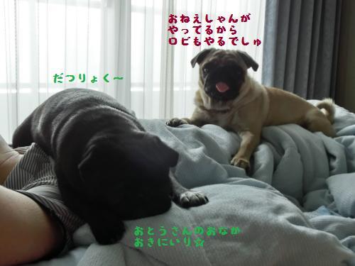 3_20120730221346.jpg