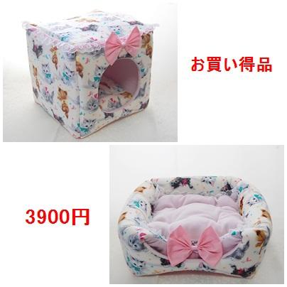 blog5_20130114141435.jpg