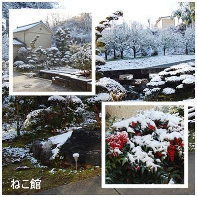 blog6_20121128093931.jpg
